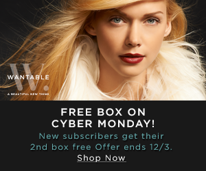 Wantable Cyber Monday Sale