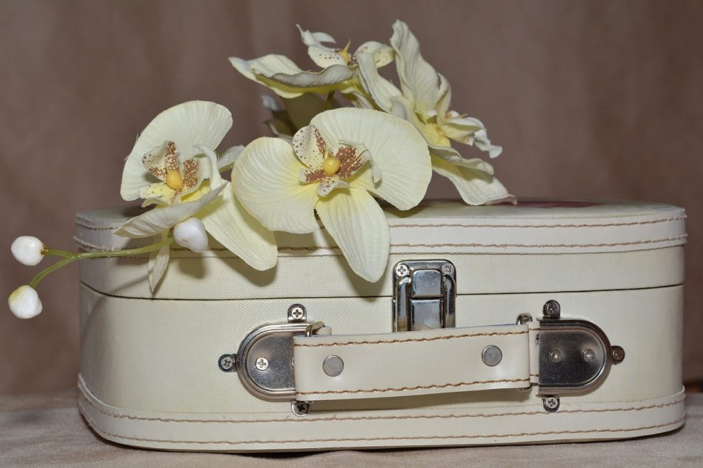 carry_on_luggage